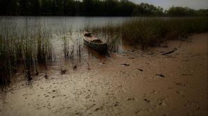Tidal Mud Flats