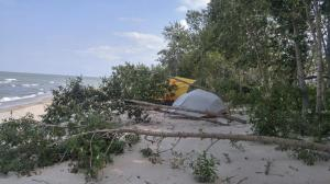 Campsite with a Wind Break