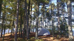Island Campsite on White Fish Bay